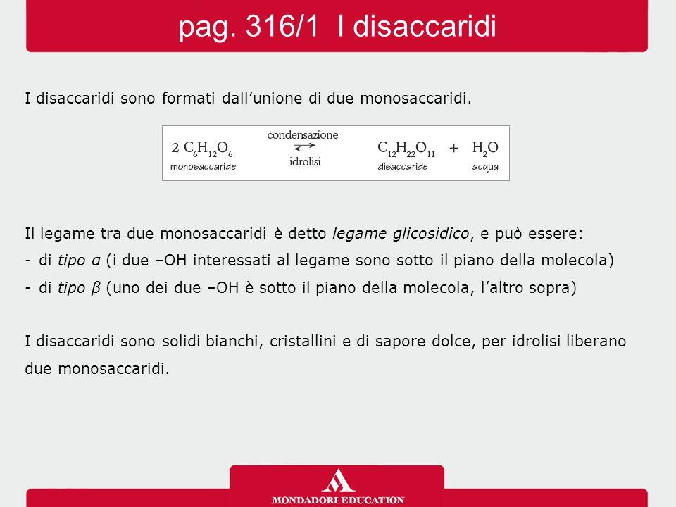 I disaccaridi sono formati dall'unione di due monosaccaridi. Il legame tra due monosaccaridi è detto legame glicosidico, e può essere: -di tipo α (i d