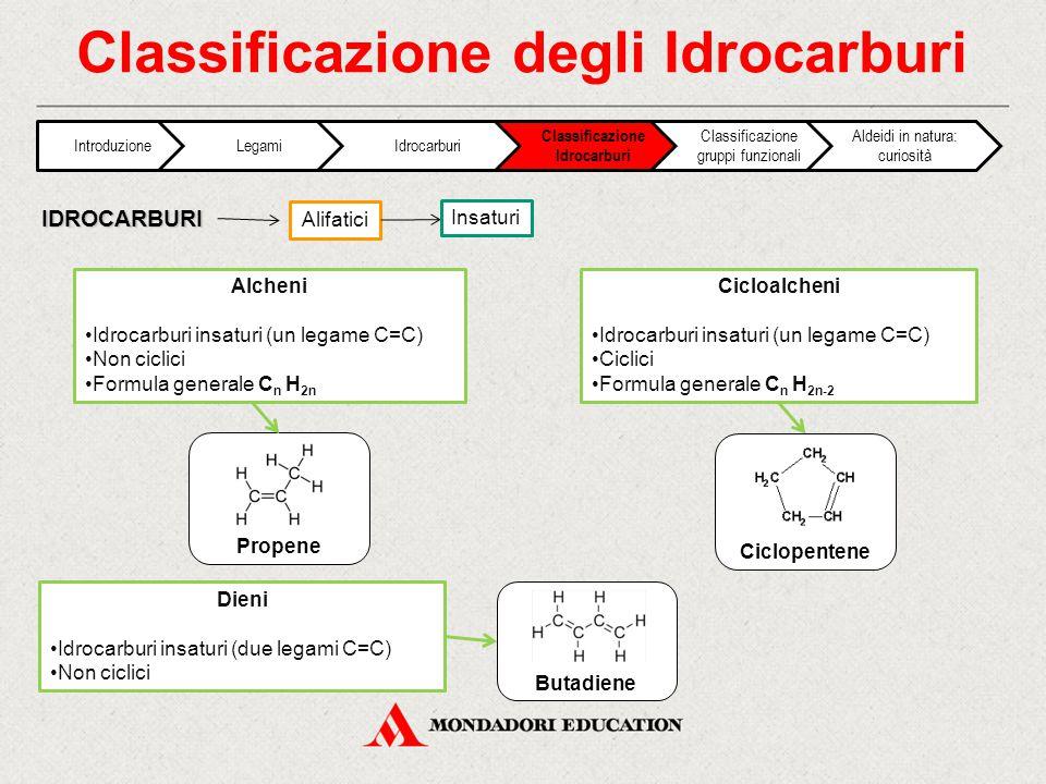 Classificazione degli Idrocarburi Alifatici IDROCARBURI Insaturi Alcheni Idrocarburi insaturi (un legame C=C) Non ciclici Formula generale C n H 2n Di