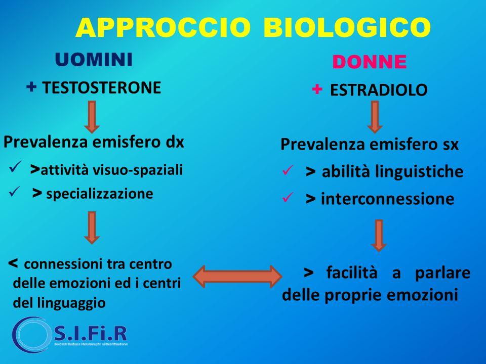 APPROCCIO BIOLOGICO UOMINI + TESTOSTERONE Prevalenza emisfero dx > attività visuo-spaziali > specializzazione < connessioni tra centro delle emozioni