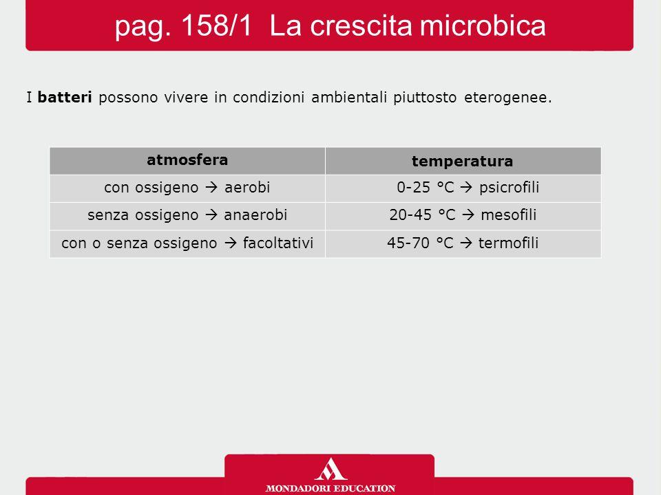 I batteri possono vivere in condizioni ambientali piuttosto eterogenee. pag. 158/1 La crescita microbica atmosfera temperatura con ossigeno  aerobi 0