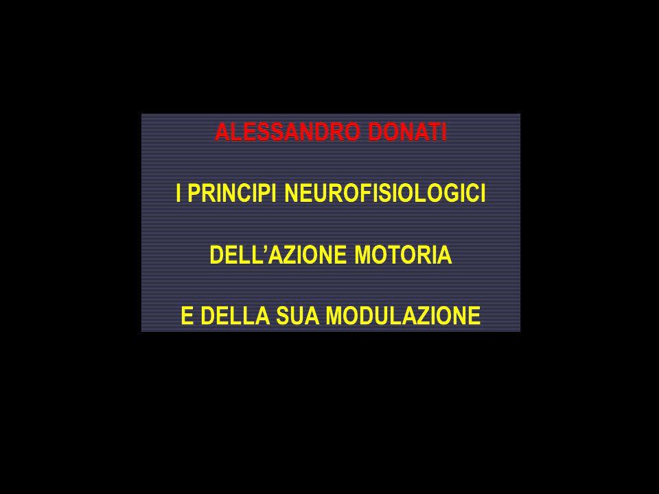 ALESSANDRO DONATI I PRINCIPI NEUROFISIOLOGICI DELL'AZIONE MOTORIA E DELLA SUA MODULAZIONE ALESSANDRO DONATI I PRINCIPI NEUROFISIOLOGICI DELL'AZIONE MO
