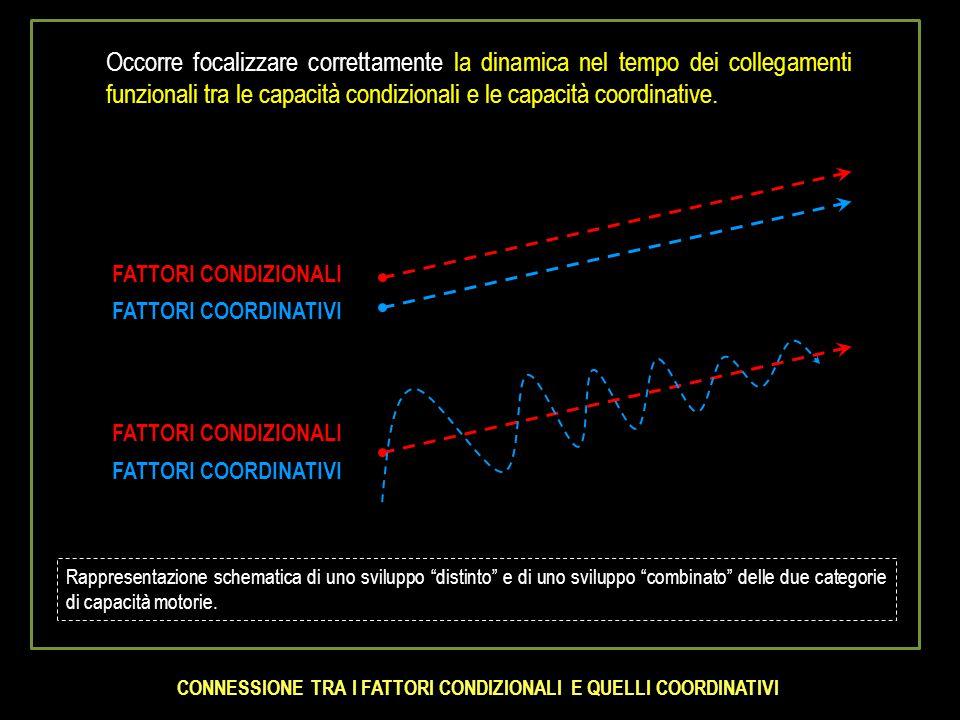 Occorre focalizzare correttamente la dinamica nel tempo dei collegamenti funzionali tra le capacità condizionali e le capacità coordinative. FATTORI C