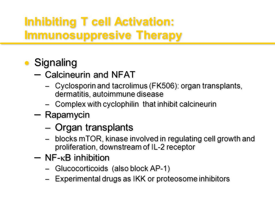 Inhibiting T cell Activation: Immunosuppresive Therapy  Surface directed – Antibodies against key components – Anti-CD3-T cell depletion: for organ t
