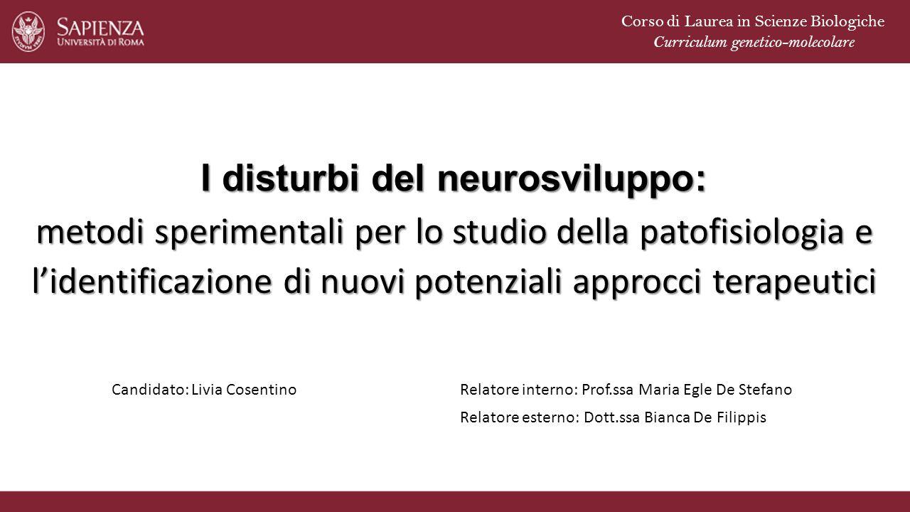 I disturbi del neurosviluppo: metodi sperimentali per lo studio della patofisiologia e l'identificazione di nuovi potenziali approcci terapeutici Cand