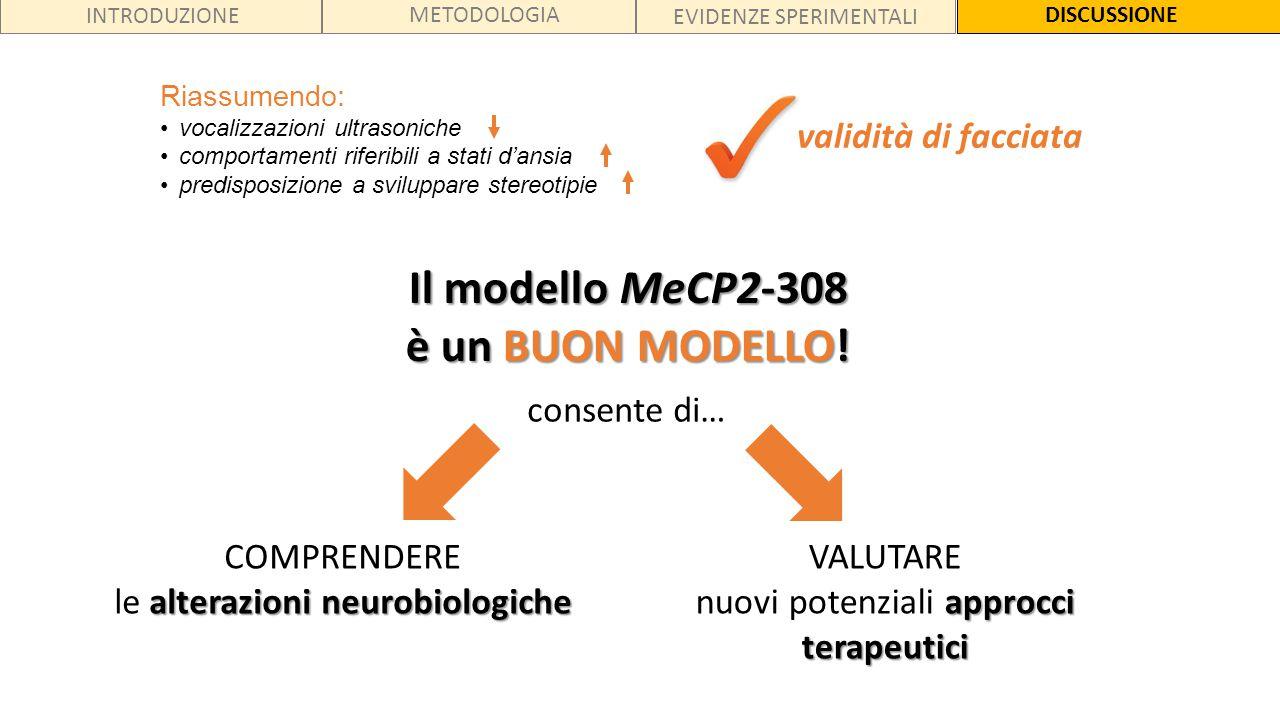 INTRODUZIONE METODOLOGIA EVIDENZE SPERIMENTALI DISCUSSIONE validità di facciata Il modello MeCP2-308 è un BUON MODELLO! COMPRENDERE alterazioni neurob