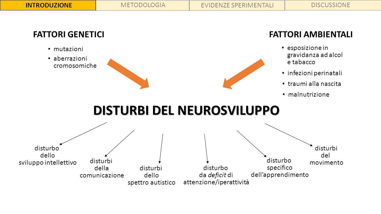DISTURBI DEL NEUROSVILUPPO disturbo dello sviluppo intellettivo disturbi della comunicazione disturbi dello spettro autistico disturbi del movimento d