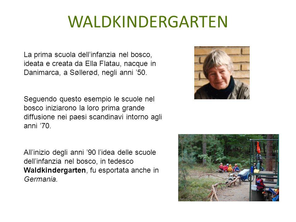 La prima scuola dell'infanzia nel bosco, ideata e creata da Ella Flatau, nacque in Danimarca, a Søllerød, negli anni '50. Seguendo questo esempio le s
