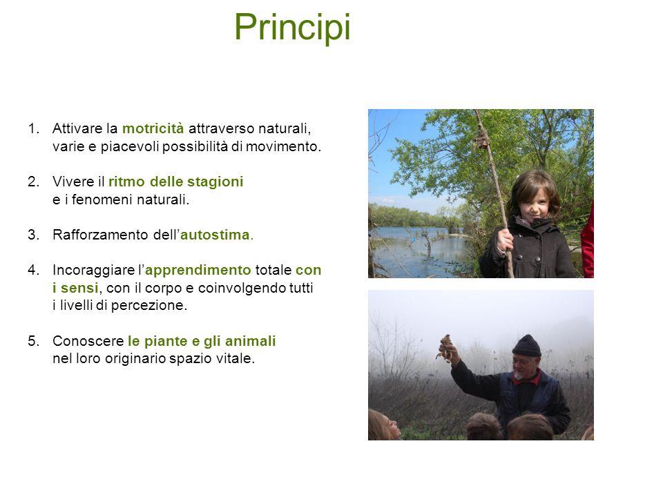 1. 1.Attivare la motricità attraverso naturali, varie e piacevoli possibilità di movimento. 2. 2.Vivere il ritmo delle stagioni e i fenomeni naturali.