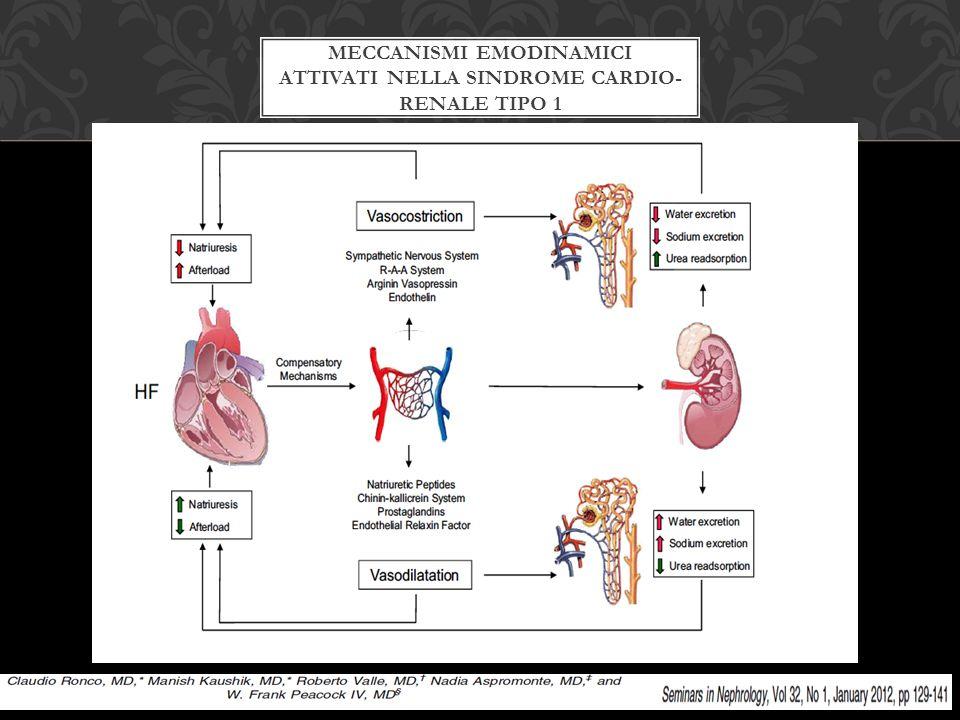 VANTAGGI  Riduzione della congestione di fluidi e miglioramento emodinamica renale  Miglioramento clearance massa del sodio  Correzione delle turbe elettrolitiche ( iposodiemia, ipokaliemia)  No attivazione neuroormonale  Miglioramento capacità di esercizio  Minore ospedalizzazione SVANTAGGI  Complicazioni locali e sistemiche (accesso venoso, anticoagulazione, infezione/sepsi )  Assenza di dati su mortalità a lungo termine  Assenza di linee guida validate (selezione paziente, timing di inizio e fine, UF rate/volume )  Necessità di personale addestrato specificamente  Costi POTENZIALI VANTAGGI E SVANTAGGI DELL'UF IN CORSO DI AHF Koniari et al.