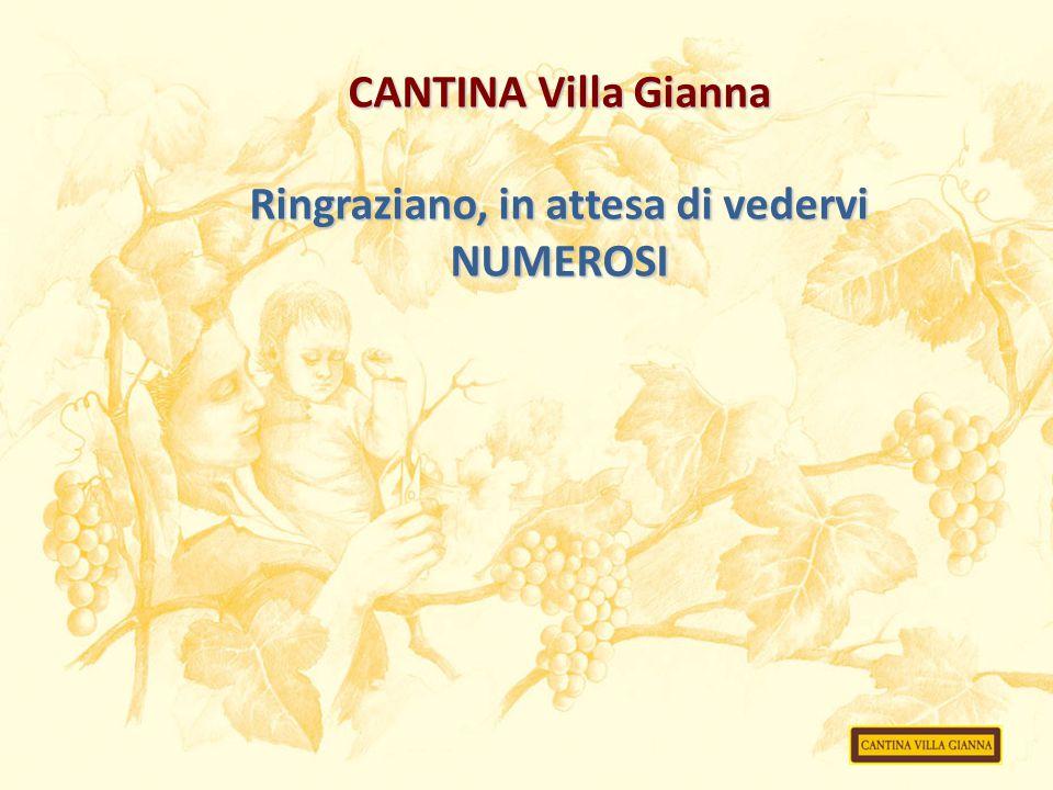 CANTINA Villa Gianna Ringraziano, in attesa di vedervi NUMEROSI