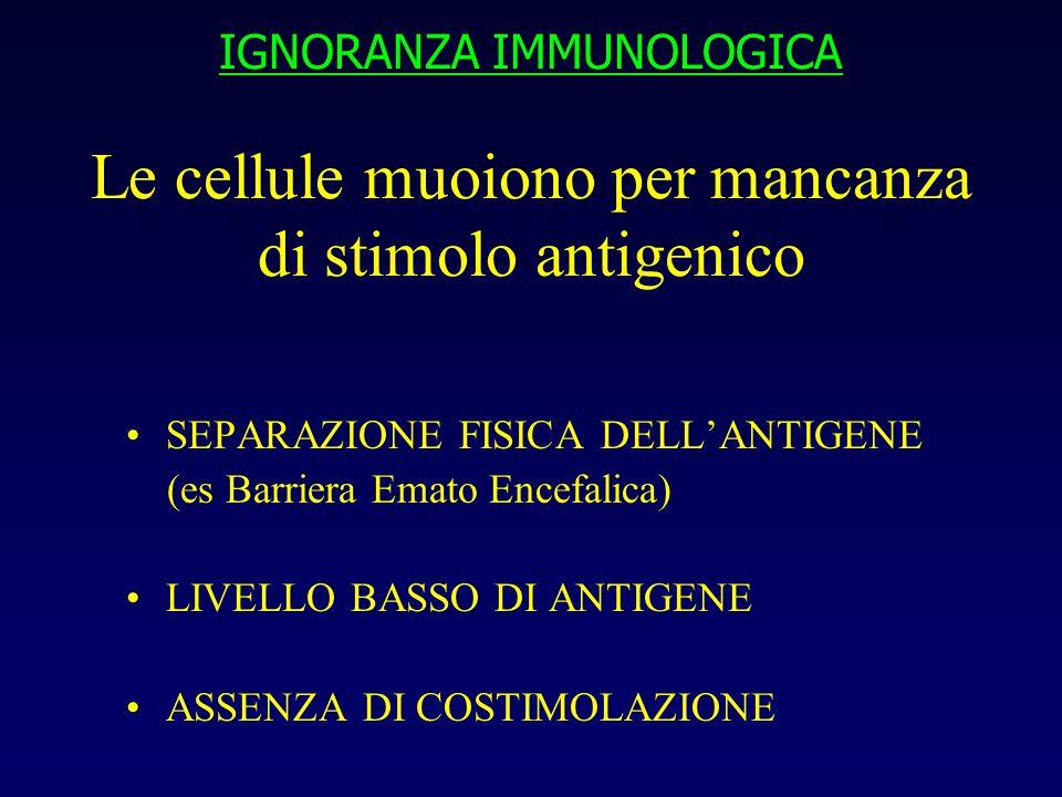 IGNORANZA IMMUNOLOGICA Le cellule muoiono per mancanza di stimolo antigenico SEPARAZIONE FISICA DELL'ANTIGENE (es Barriera Emato Encefalica) LIVELLO BASSO DI ANTIGENE ASSENZA DI COSTIMOLAZIONE