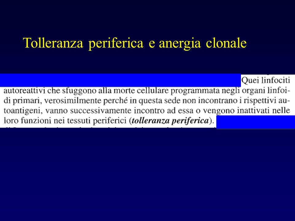 Tolleranza periferica e anergia clonale