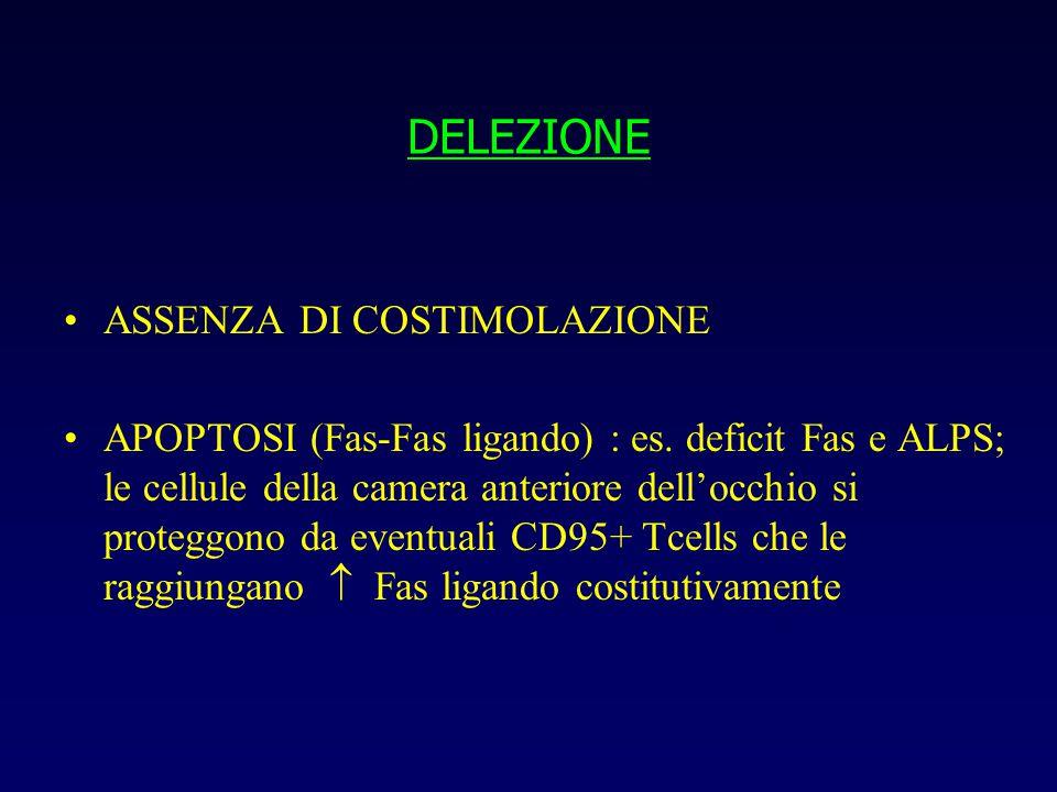 DELEZIONE ASSENZA DI COSTIMOLAZIONE APOPTOSI (Fas-Fas ligando) : es.