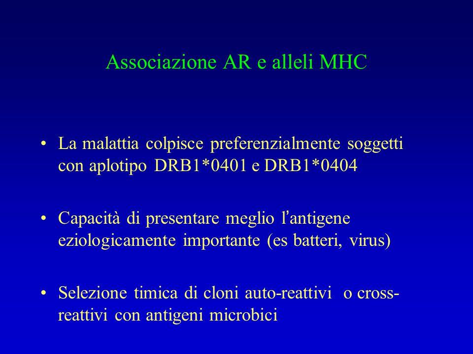 Associazione AR e alleli MHC La malattia colpisce preferenzialmente soggetti con aplotipo DRB1*0401 e DRB1*0404 Capacità di presentare meglio l'antige