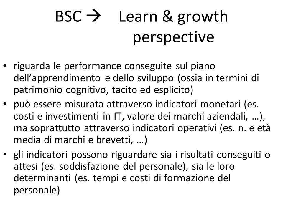 BSC  Learn & growth perspective riguarda le performance conseguite sul piano dell'apprendimento e dello sviluppo (ossia in termini di patrimonio cogn