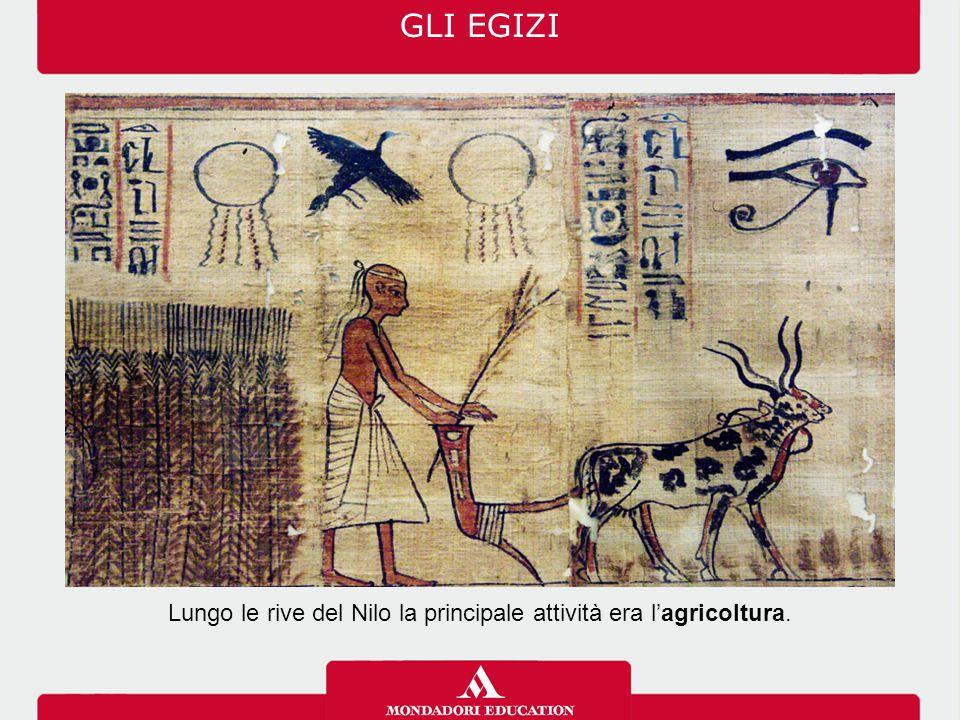 GLI EGIZI Lungo le rive del Nilo la principale attività era l'agricoltura.