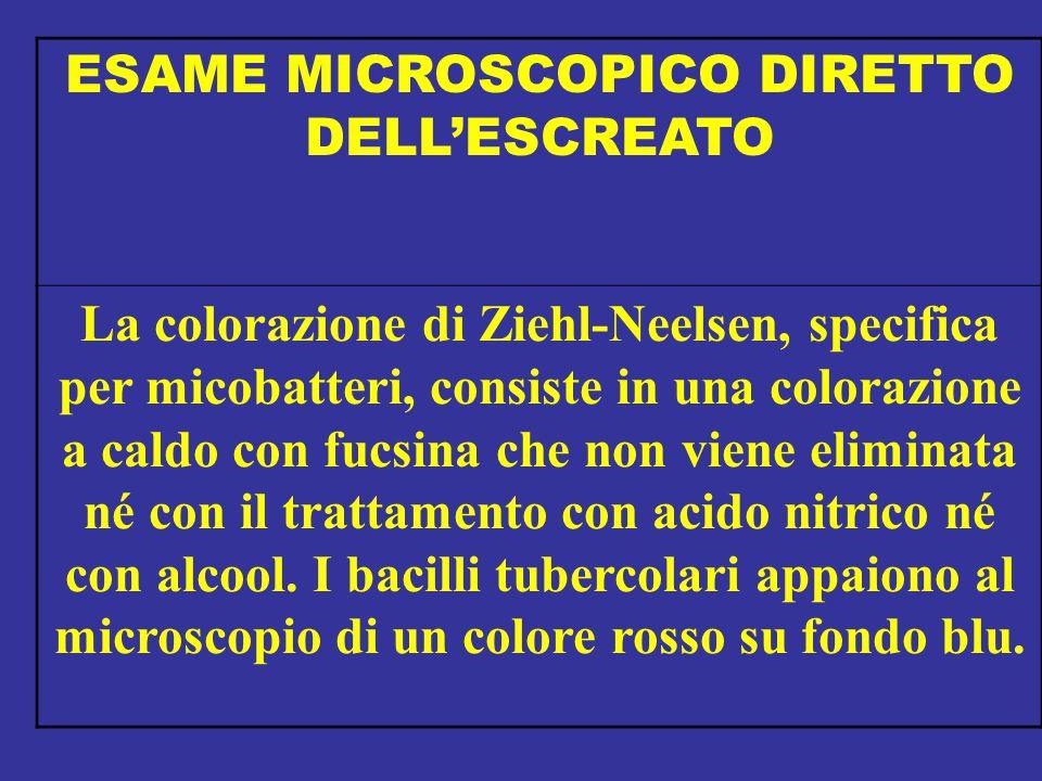 ESAME MICROSCOPICO DIRETTO DELL'ESCREATO La colorazione di Ziehl-Neelsen, specifica per micobatteri, consiste in una colorazione a caldo con fucsina c