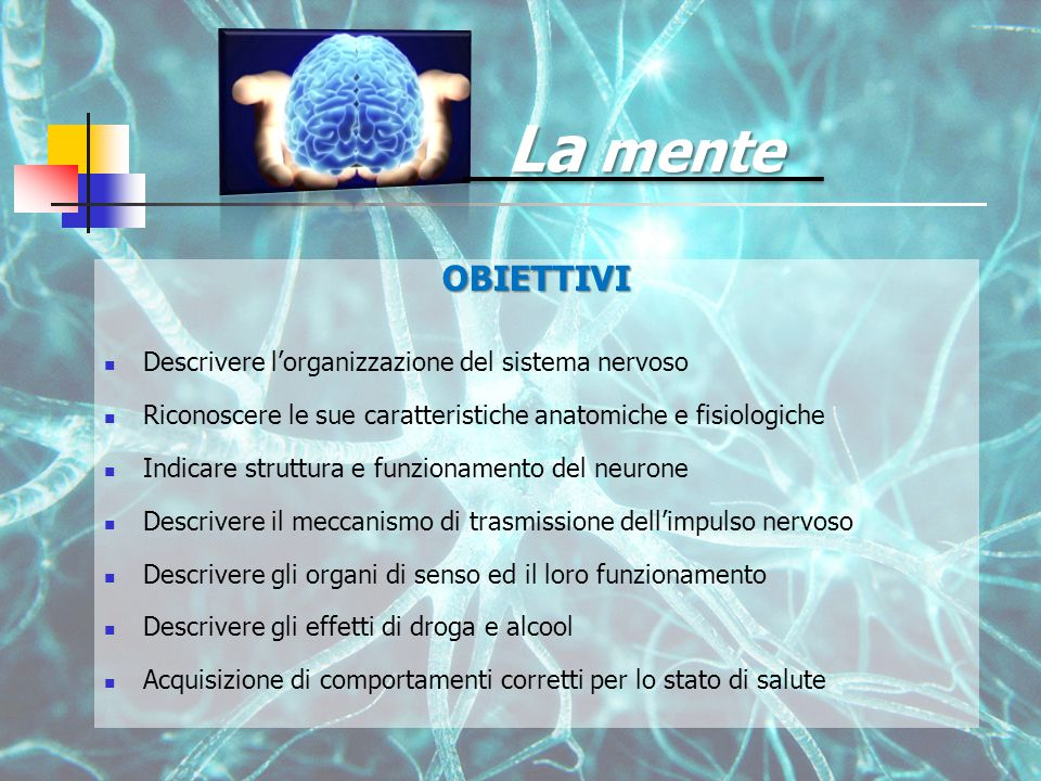 La mente OBIETTIVI Descrivere l'organizzazione del sistema nervoso Riconoscere le sue caratteristiche anatomiche e fisiologiche Indicare struttura e funzionamento del neurone Descrivere il meccanismo di trasmissione dell'impulso nervoso Descrivere gli organi di senso ed il loro funzionamento Descrivere gli effetti di droga e alcool Acquisizione di comportamenti corretti per lo stato di salute
