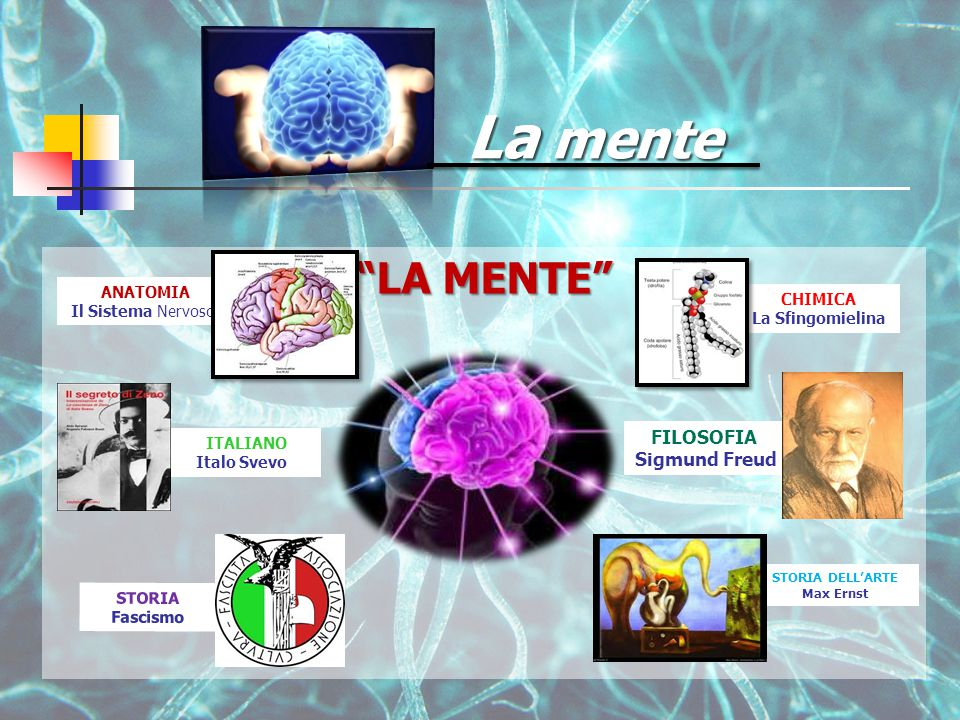LA MENTE ITALIANO Italo Svevo STORIA Fascismo La mente ANATOMIA Il Sistema Nervoso CHIMICA La Sfingomielina STORIA DELL'ARTE Max Ernst FILOSOFIA Sigmund Freud