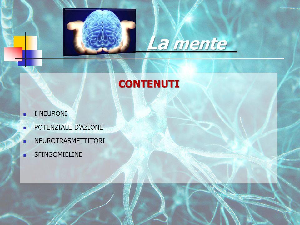 CONTENUTI I NEURONI POTENZIALE D'AZIONE NEUROTRASMETTITORI SFINGOMIELINE