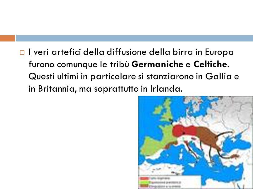  I veri artefici della diffusione della birra in Europa furono comunque le tribù Germaniche e Celtiche. Questi ultimi in particolare si stanziarono i