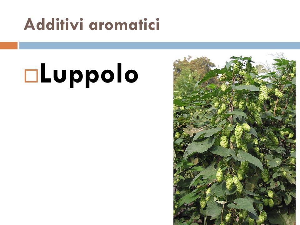 Additivi aromatici  Luppolo