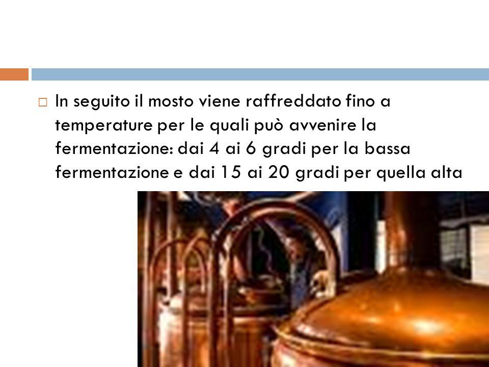  In seguito il mosto viene raffreddato fino a temperature per le quali può avvenire la fermentazione: dai 4 ai 6 gradi per la bassa fermentazione e d