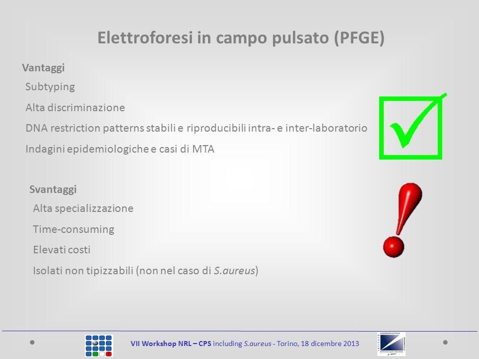 VII Workshop NRL – CPS including S.aureus - Torino, 18 dicembre 2013 Elettroforesi in campo pulsato (PFGE) Subtyping Alta discriminazione DNA restrict