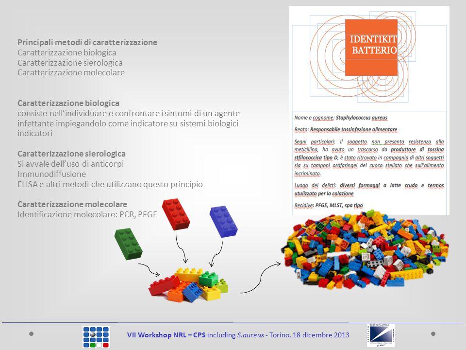 VII Workshop NRL – CPS including S.aureus - Torino, 18 dicembre 2013 Principali metodi di caratterizzazione Caratterizzazione biologica Caratterizzazi