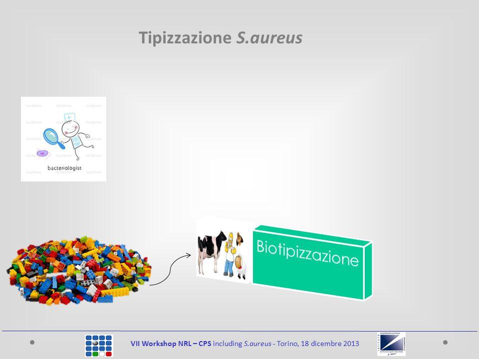 VII Workshop NRL – CPS including S.aureus - Torino, 18 dicembre 2013 Tipizzazione S.aureus