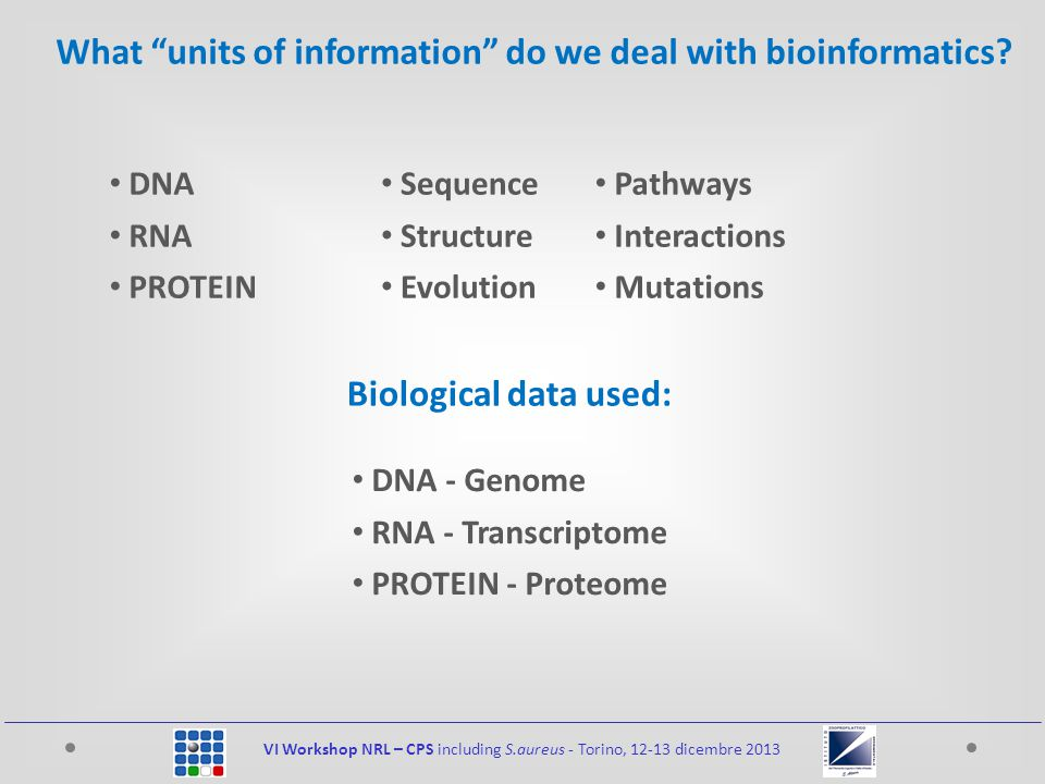 VI Workshop NRL – CPS including S.aureus - Torino, 12-13 dicembre 2013 DNA RNA PROTEIN What units of information do we deal with bioinformatics.