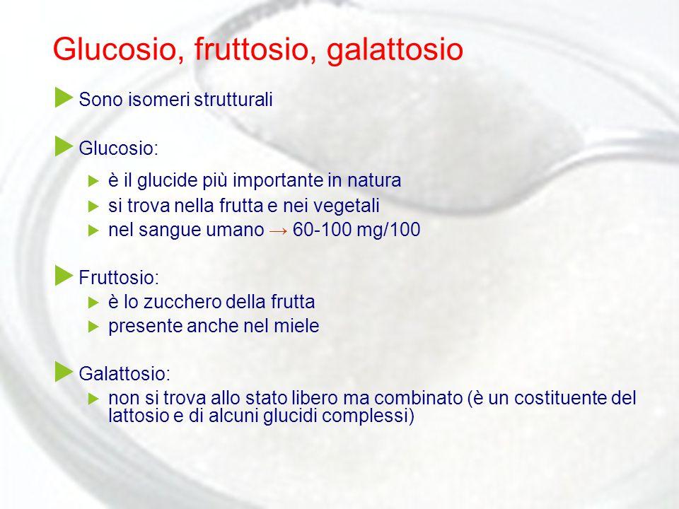 Glucosio, fruttosio, galattosio  Sono isomeri strutturali  Glucosio:  è il glucide più importante in natura  si trova nella frutta e nei vegetali