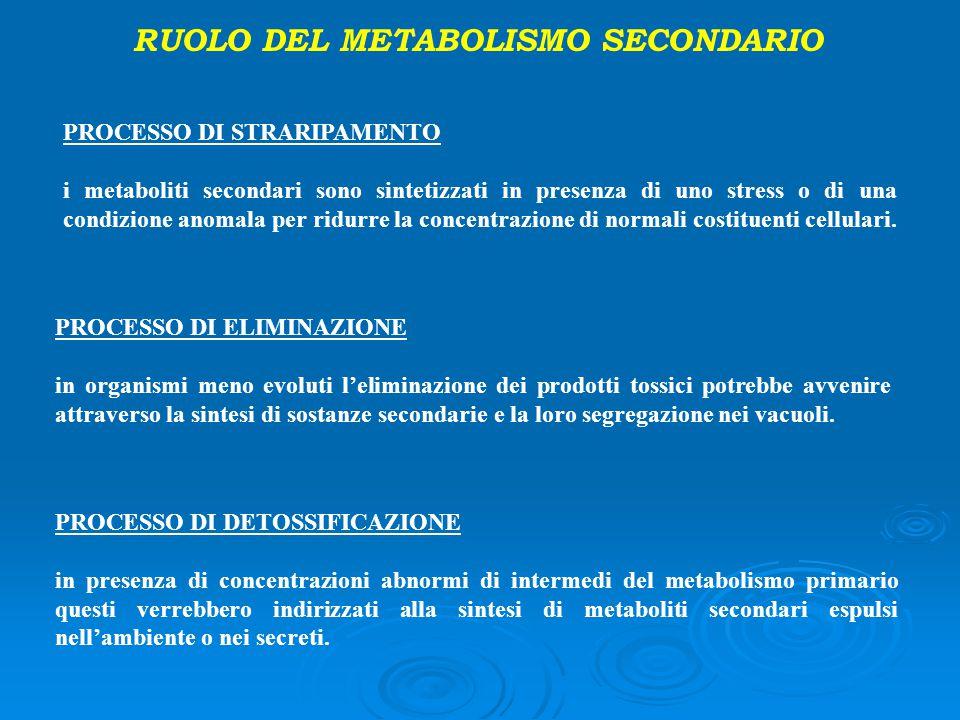 RUOLO DEL METABOLISMO SECONDARIO PROCESSO DI STRARIPAMENTO i metaboliti secondari sono sintetizzati in presenza di uno stress o di una condizione anom