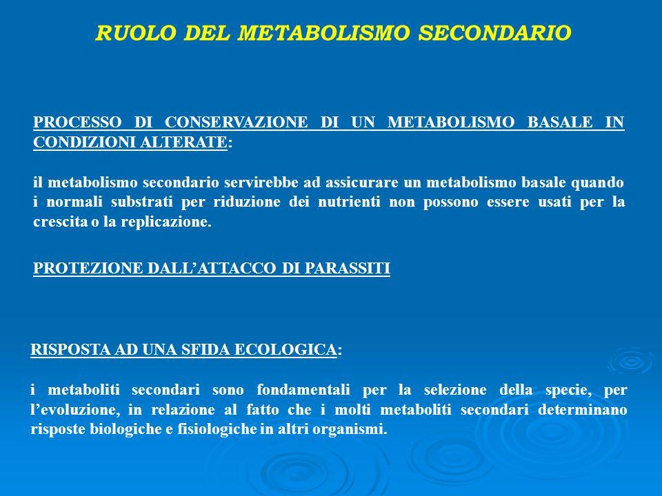 RUOLO DEL METABOLISMO SECONDARIO PROCESSO DI CONSERVAZIONE DI UN METABOLISMO BASALE IN CONDIZIONI ALTERATE: il metabolismo secondario servirebbe ad as