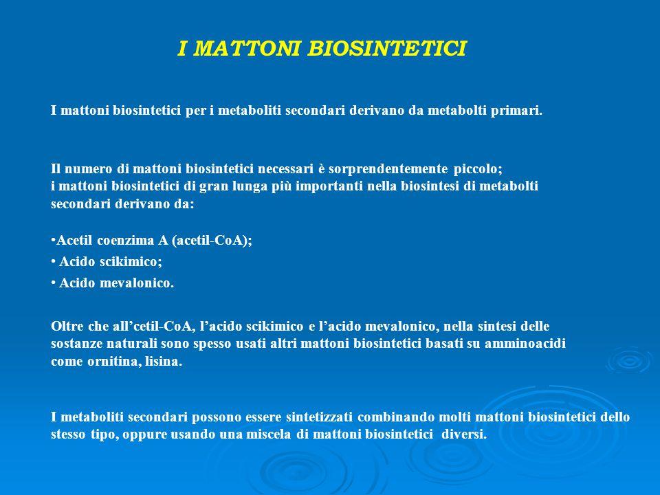 I mattoni biosintetici per i metaboliti secondari derivano da metabolti primari. Il numero di mattoni biosintetici necessari è sorprendentemente picco