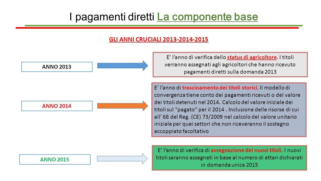 I pagamenti diretti La componente base GLI ANNI CRUCIALI 2013-2014-2015 ANNO 2013 E' l'anno di verifica dello status di agricoltore. I titoli verranno