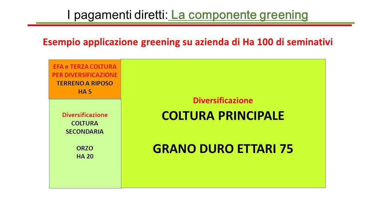 I pagamenti diretti: La componente greening EFA e TERZA COLTURA PER DIVERSIFICAZIONE TERRENO A RIPOSO HA 5 Diversificazione COLTURA PRINCIPALE GRANO D