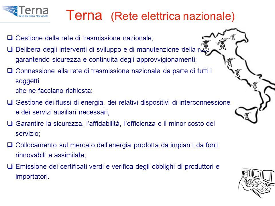 Terna (Rete elettrica nazionale)  Gestione della rete di trasmissione nazionale;  Delibera degli interventi di sviluppo e di manutenzione della rete