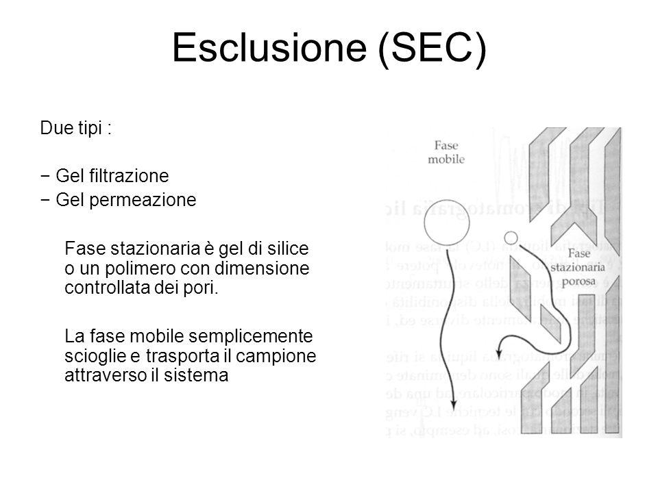 Esclusione (SEC) Due tipi : − Gel filtrazione − Gel permeazione Fase stazionaria è gel di silice o un polimero con dimensione controllata dei pori. La