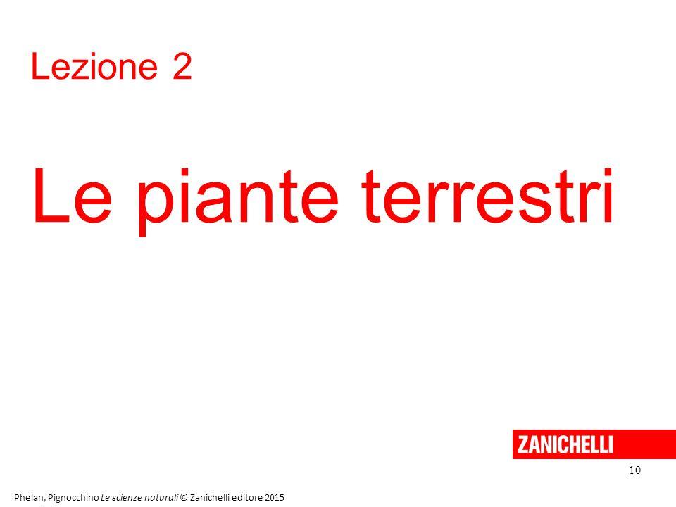 Lezione 2 Le piante terrestri 10 Phelan, Pignocchino Le scienze naturali © Zanichelli editore 2015