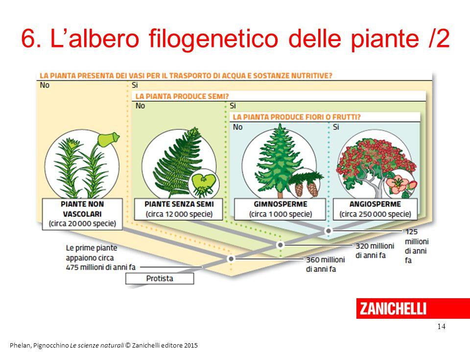 6. L'albero filogenetico delle piante /2 14 Phelan, Pignocchino Le scienze naturali © Zanichelli editore 2015