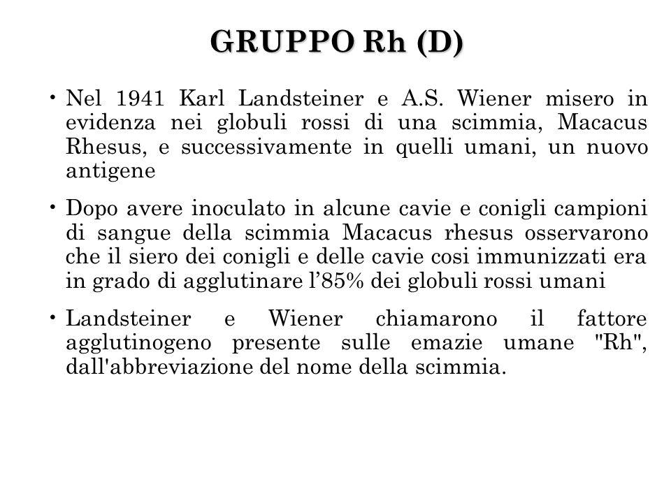 Nel 1941 Karl Landsteiner e A.S.