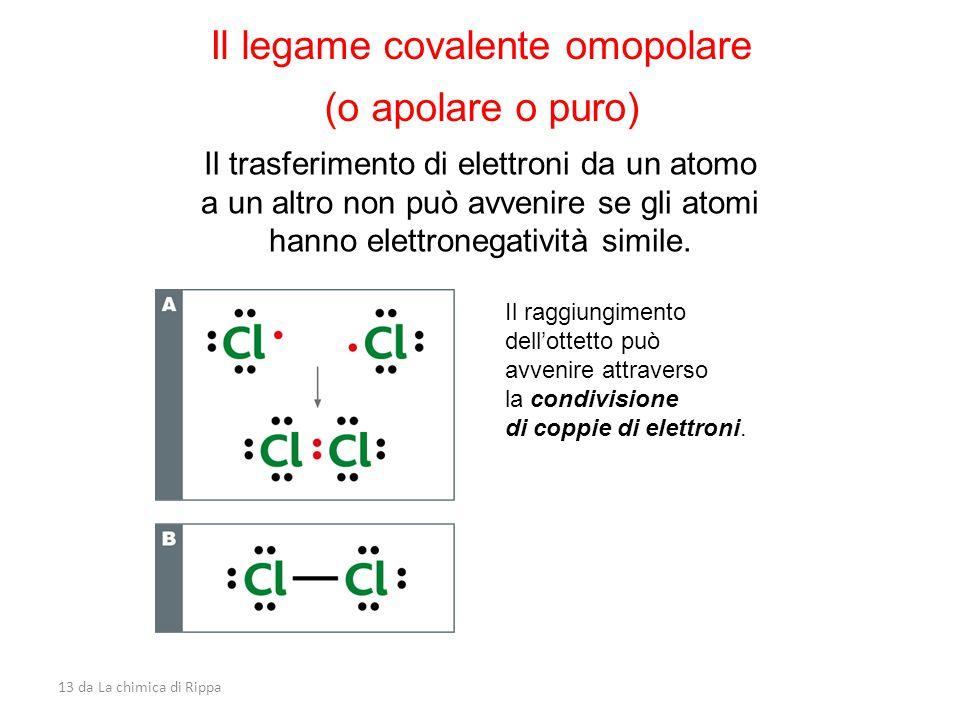 13 da La chimica di Rippa Il legame covalente omopolare (o apolare o puro) Il trasferimento di elettroni da un atomo a un altro non può avvenire se gli atomi hanno elettronegatività simile.