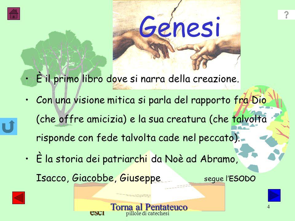 esci A.Belingardi pillole di catechesi 4 Genesi È il primo libro dove si narra della creazione.