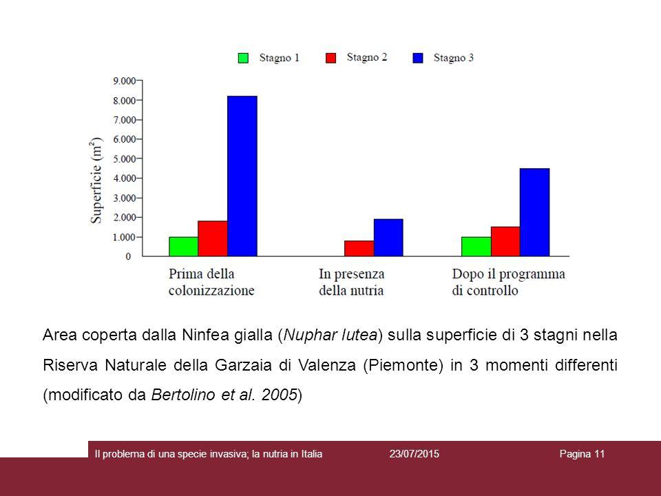 23/07/2015 Il problema di una specie invasiva; la nutria in ItaliaPagina 11 Area coperta dalla Ninfea gialla (Nuphar lutea) sulla superficie di 3 stagni nella Riserva Naturale della Garzaia di Valenza (Piemonte) in 3 momenti differenti (modificato da Bertolino et al.