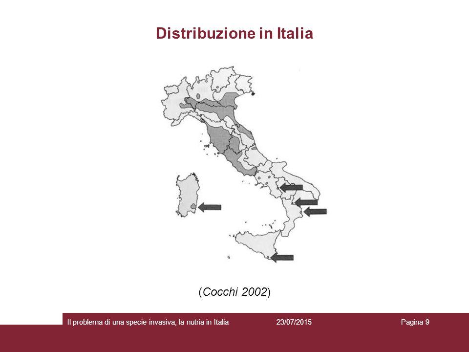 Impatto sulle fitocenosi 23/07/2015 Il problema di una specie invasiva; la nutria in ItaliaPagina 10  La nutria ingerisce da 700 a 1.500 g di materia vegetale al giorno (circa il 25% del suo peso corporeo) (Woods et al.