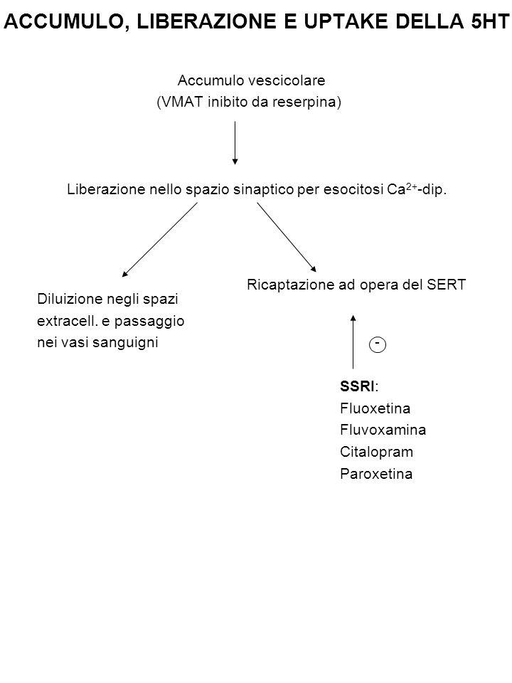 ACCUMULO, LIBERAZIONE E UPTAKE DELLA 5HT Accumulo vescicolare (VMAT inibito da reserpina) Liberazione nello spazio sinaptico per esocitosi Ca 2+ -dip.