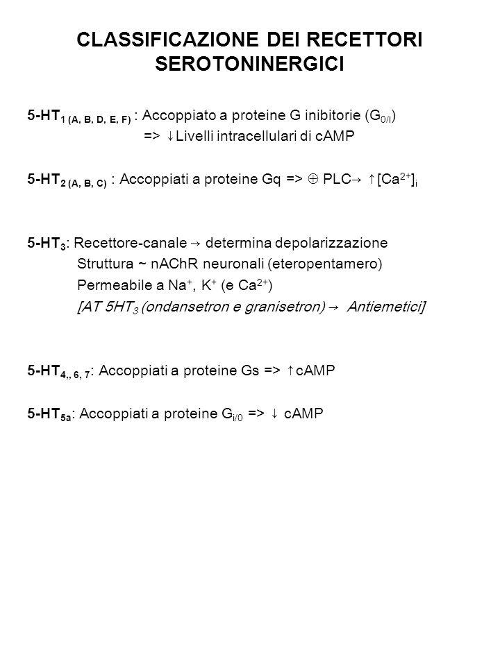CLASSIFICAZIONE DEI RECETTORI SEROTONINERGICI 5-HT 1 (A, B, D, E, F) : Accoppiato a proteine G inibitorie (G 0/i ) => ↓Livelli intracellulari di cAMP