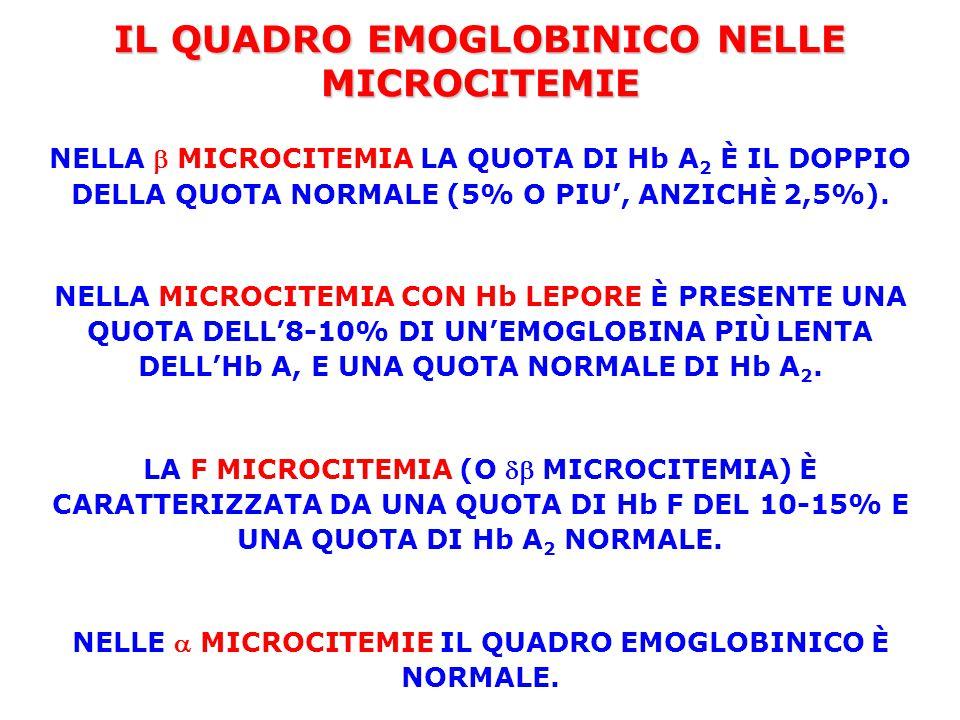 IL QUADRO EMOGLOBINICO NELLE MICROCITEMIE NELLA  MICROCITEMIA LA QUOTA DI Hb A 2 È IL DOPPIO DELLA QUOTA NORMALE (5% O PIU', ANZICHÈ 2,5%). NELLA MIC