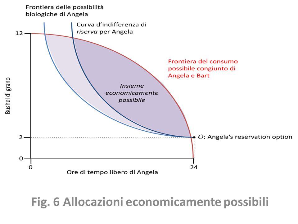 Fig. 6 Allocazioni economicamente possibili